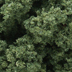Woodland Scenics - Clump Foliage, Trees or Shrubs