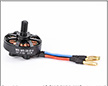 Walkera Runner 250 Brushless Motor (Counter Clockwise)