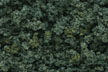 Woodland Scenics Medium Green Clump foliage